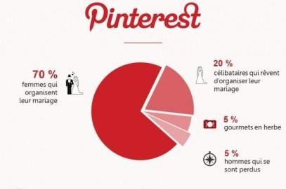 Les réseaux sociaux déchiffrés en infographies et avec humour